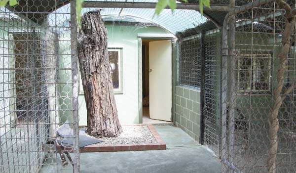 Dog Kennels Image 5